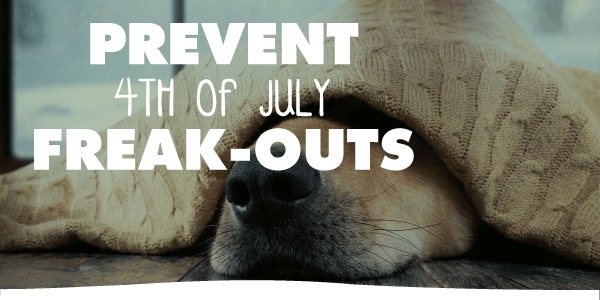 Prevent 4th of July Freak-Outs!
