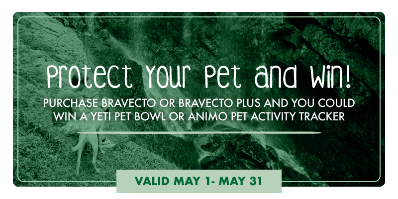 Protect Your Pet and Win. May Bravecto Promotion - Garden Oaks Veterinary Clinic